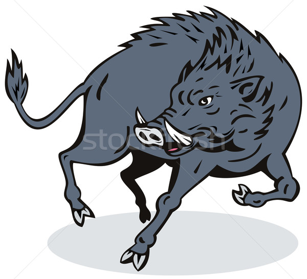Wild Hog Jumping Stock photo © patrimonio