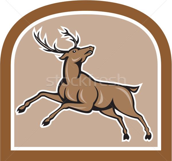 Stag Deer Looking Up Jumping Cartoon Stock photo © patrimonio