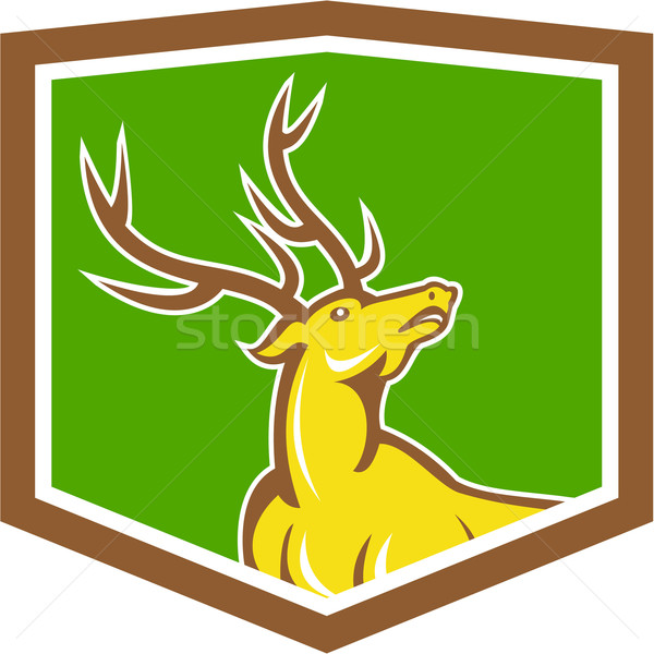 Stag Deer Looking Up Shield Cartoon Stock photo © patrimonio