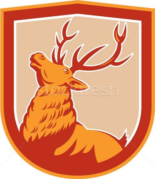 Deer Stag Buck Head Looking Up Retro Stock photo © patrimonio
