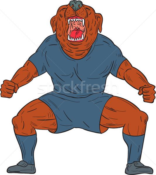 Bulldog Footballer Celebrating Goal Cartoon Stock photo © patrimonio