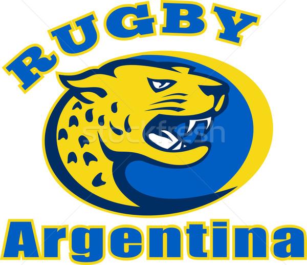 Rugby Arjantin jaguar maskot kafa örnek Stok fotoğraf © patrimonio