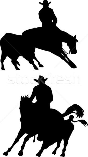 Rodeo Cowboy Horse Riding Silhouette Stock photo © patrimonio