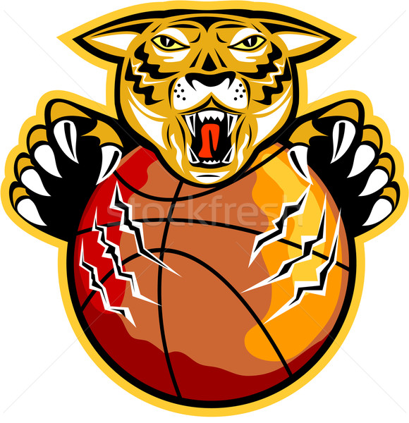 Tigre basket palla illustrazione arrabbiato Foto d'archivio © patrimonio