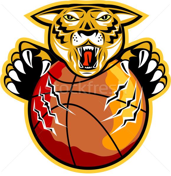 Tiger Basketball Ball Claws Stock photo © patrimonio