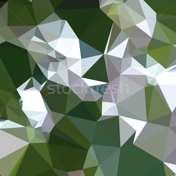 Verde abstract basso poligono stile illustrazione Foto d'archivio © patrimonio
