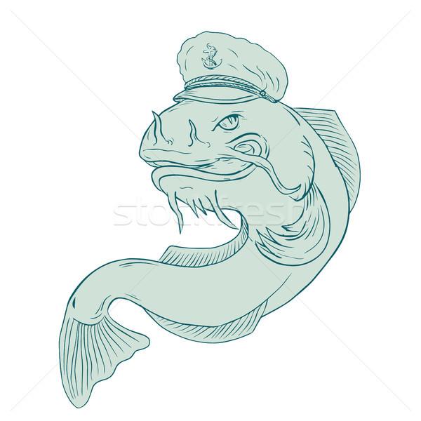 Captain Catfish Drawing Stock photo © patrimonio