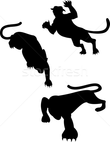 Wild Feline Silhouettes Stock photo © patrimonio