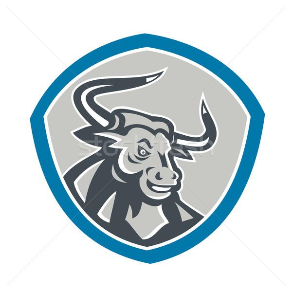 Angry Texas Longhorn Bull Shield Stock photo © patrimonio
