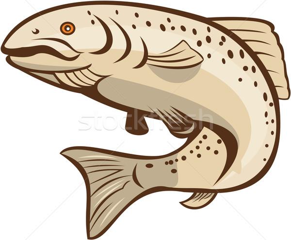 Rainbow truite sautant cartoon illustration poissons Photo stock © patrimonio
