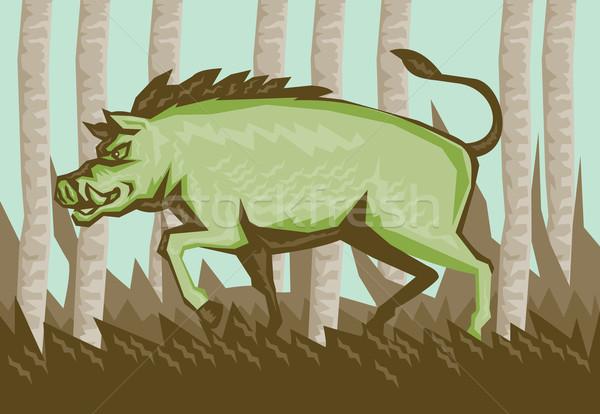 Razorback Wild Pig Boar Attacking Woodcut Stock photo © patrimonio