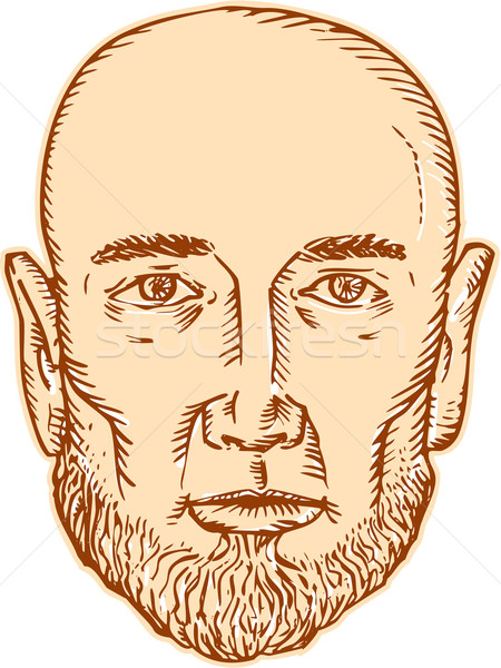 Male Bald Head Bearded Etching Stock photo © patrimonio