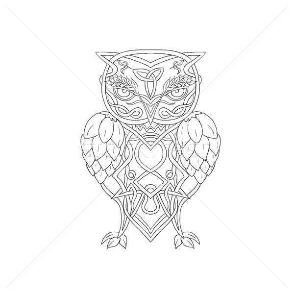 árpa bagoly kelta illusztráció stilizált fölött Stock fotó © patrimonio