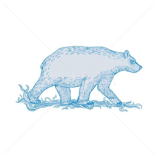 Jegesmedve sétál oldal rajz rajz stílus Stock fotó © patrimonio