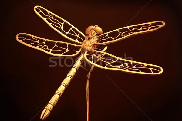 Golden Dragonfly Stock photo © paulfleet