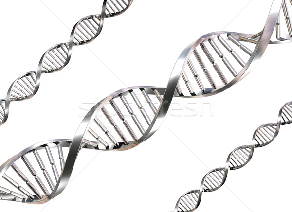 Isolated DNA Strands Stock photo © paulfleet