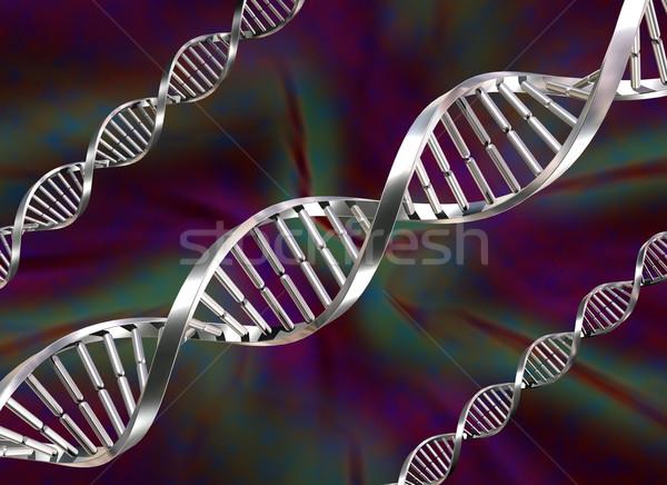 DNA Strands Stock photo © paulfleet