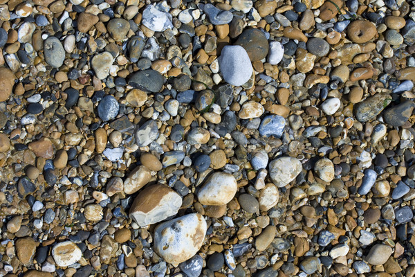 Variety of pebbles on a beach Stock photo © paulfleet