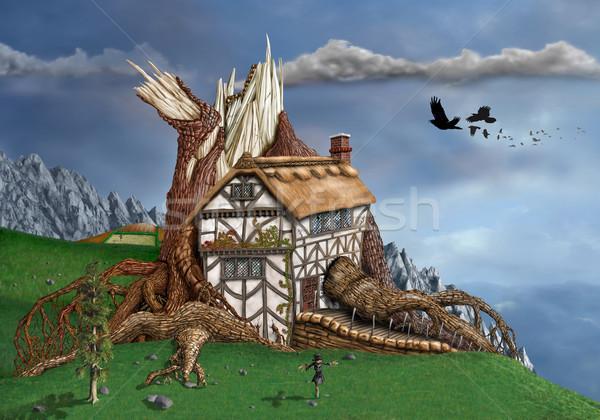 Fantasy Tree House Stock photo © paulfleet
