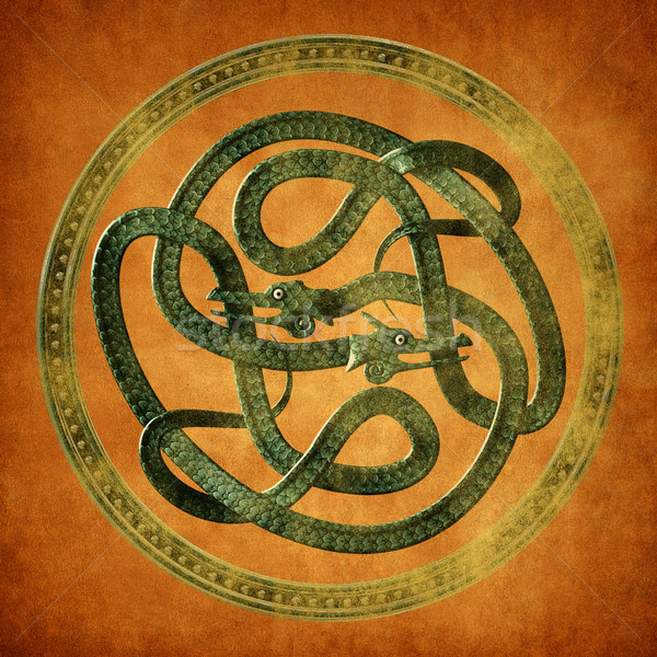 Celtic knoop groene oud perkament document Stockfoto © paulfleet