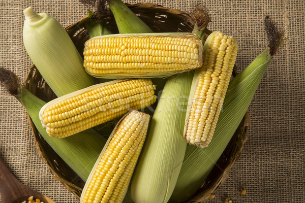 Corn maize and popcorns combined on a table.  Stock photo © paulovilela