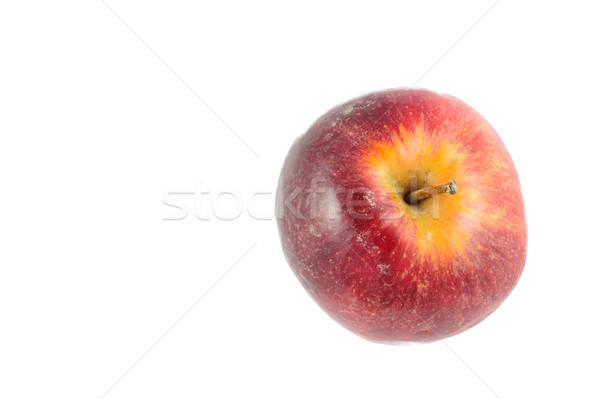 Geïsoleerd appel witte voedsel vruchten groene Stockfoto © paulwongkwan