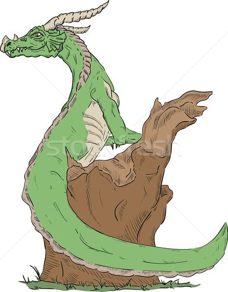 green dragon Stock photo © pavelmidi