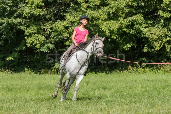 Genç kız beyaz at kadın kız spor doğa Stok fotoğraf © pavelmidi