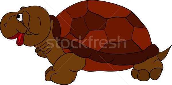 Vecteur heureux tortue isolé design vert Photo stock © pavelmidi
