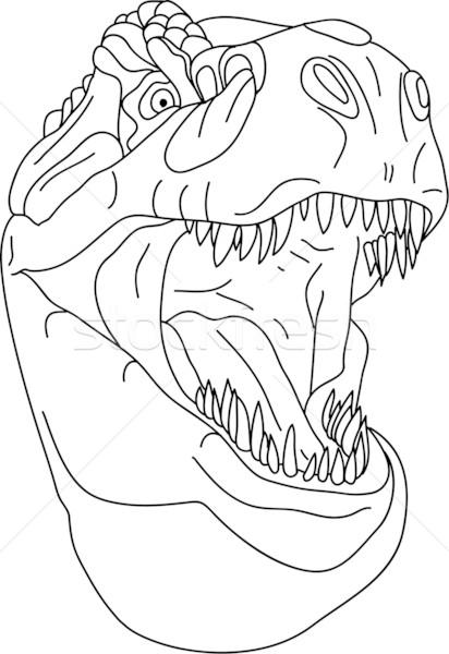 t rex head vector illustration pavel bortel pavelmidi 1399063