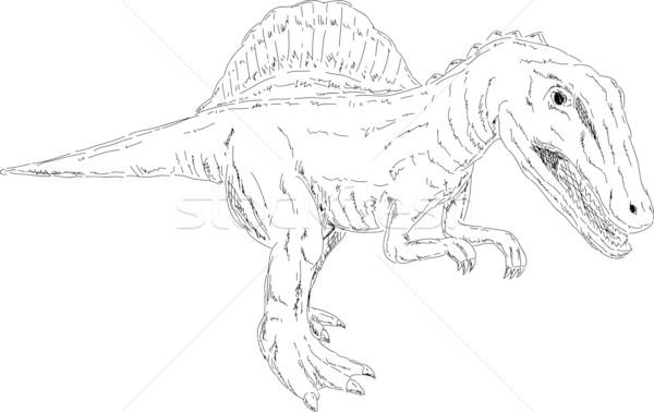 dinosaur Stock photo © pavelmidi
