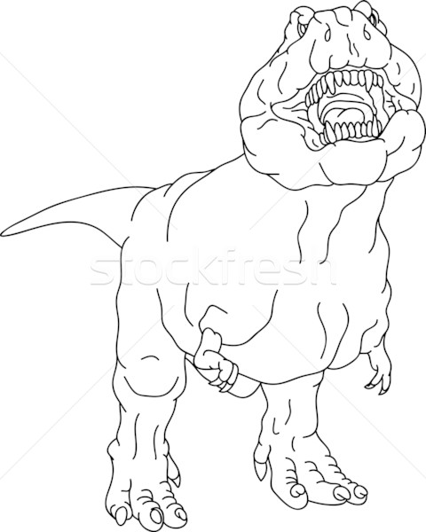 rex Stock photo © pavelmidi