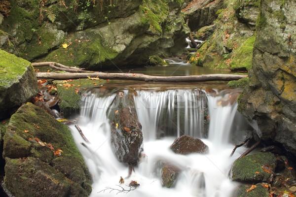Wasserfall Wald Silber Fluss Berge Tschechische Republik Stock foto © pavelmidi