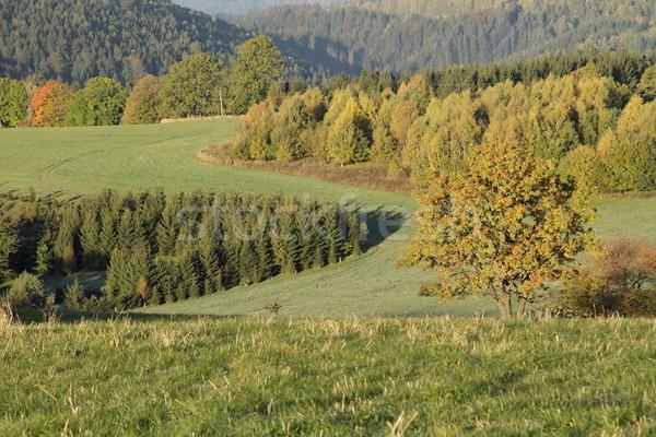 Sonbahar zaman dağlar manzara turuncu Stok fotoğraf © pavelmidi