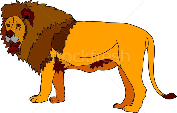 Leão vetor grande isolado branco projeto Foto stock © pavelmidi