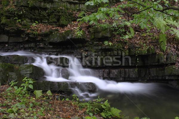 Cachoeira floresta rio montanhas República Checa água Foto stock © pavelmidi