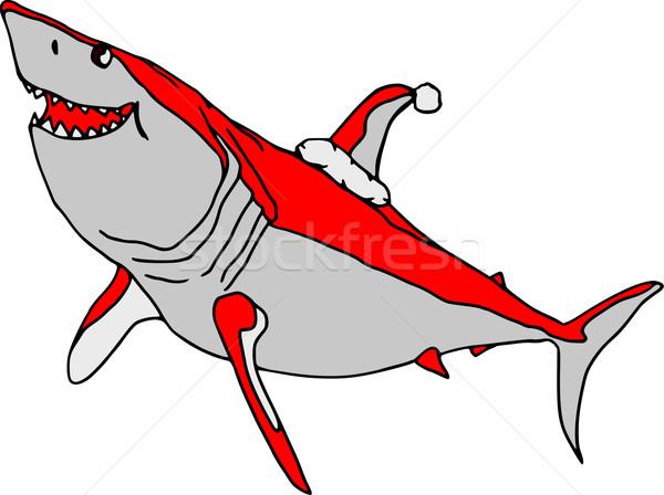 Foto stock: Vetor · tubarão · isolado · branco · água