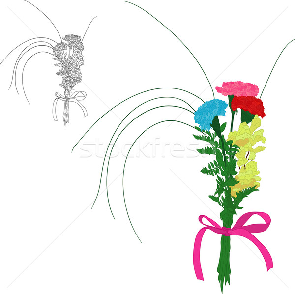 Three color carnations Stock photo © pavelmidi