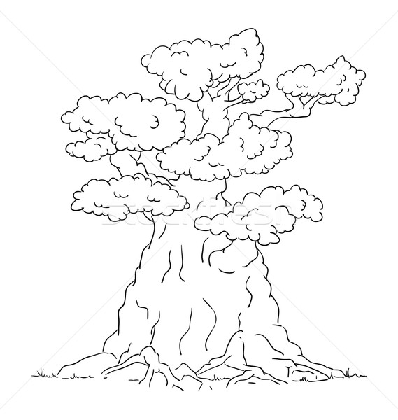 vector - Old big tree with roots - isolated on background Stock photo © pavelmidi