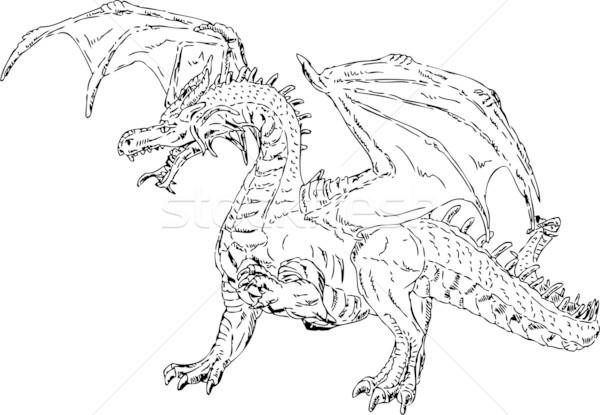 Volée dragon vecteur isolé peinture animaux Photo stock © pavelmidi
