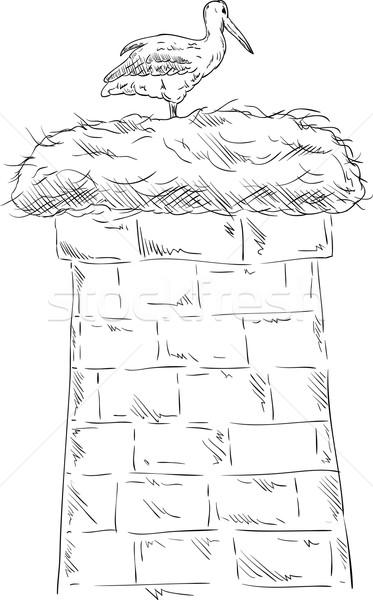 Beyaz leylek vektör yuva baca gökyüzü Stok fotoğraf © pavelmidi