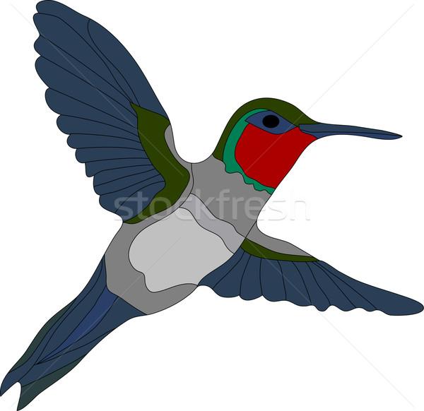Kolibri vektor izolált fehér terv művészet Stock fotó © pavelmidi