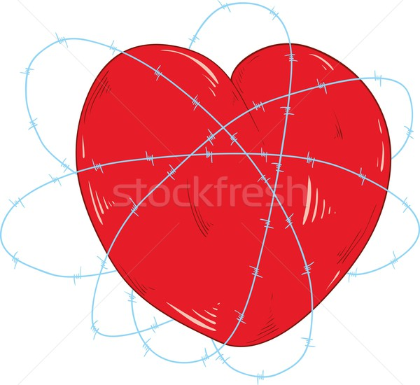 heart and  the barbed wire Stock photo © pavelmidi