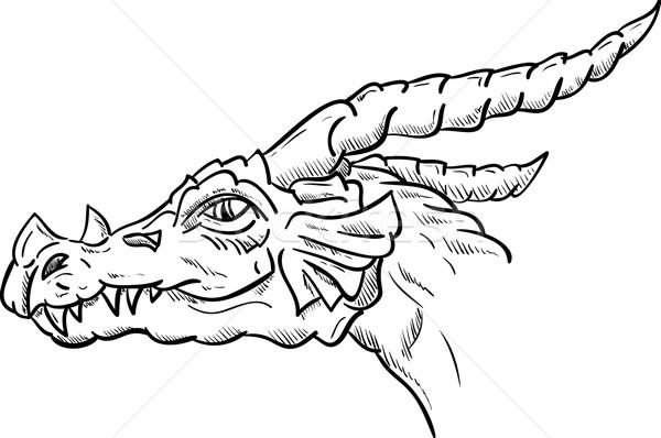 Drachen Kopf Vektor isoliert Hintergrund Tier Stock foto © pavelmidi