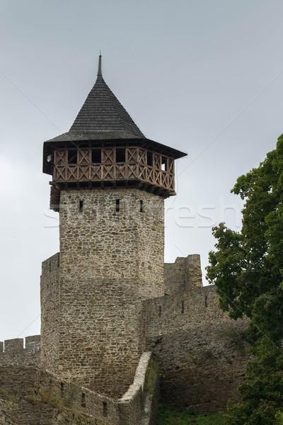 Kale Çek Cumhuriyeti Avrupa Bina duvar Stok fotoğraf © pavelmidi