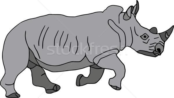 Rhino vecteur grand courir isolé blanche Photo stock © pavelmidi