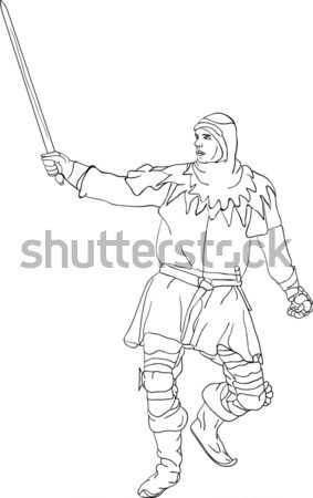 viking Stock photo © pavelmidi