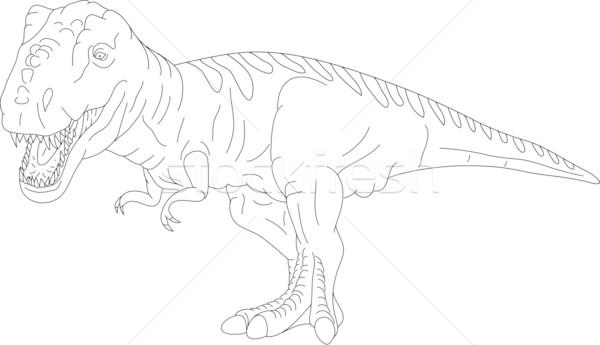 t rex Stock photo © pavelmidi