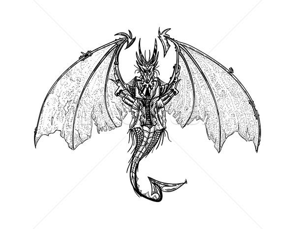Dragon Stock photo © pavelmidi