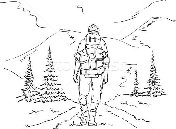 Wanderer Reise Vektor Berge Weg Baum Stock foto © pavelmidi